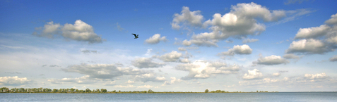 IJburg is water, groen, ruimte. En binnenkort 2000 asielzoekers