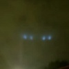 aliensnoord100.jpg