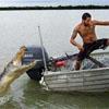 aligatorhaplol.jpg
