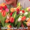 arabtitel.png