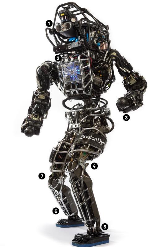 atlasrobot.jpg