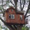 boomhutbouwenindeboomisawesome