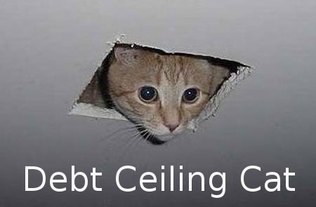 debt-ceiling_cat.jpg