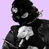 dierenvrind.png