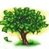 duurzamegeldboom.jpg