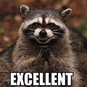 evil-raccoon.jpg