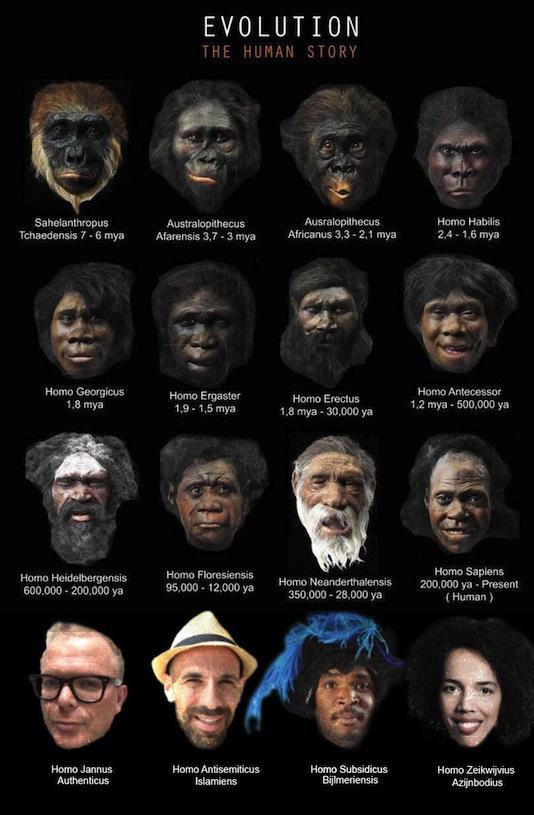 evolutie2-534.jpg