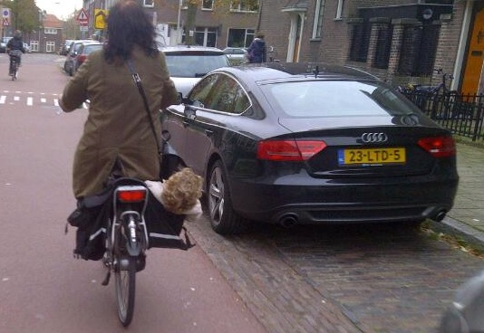 fietstaskoter534.jpg