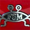 fsmm.jpg