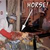 horsevlees.jpg