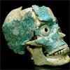 humanschedel.jpg