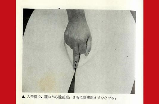 japanseseksgids534.png