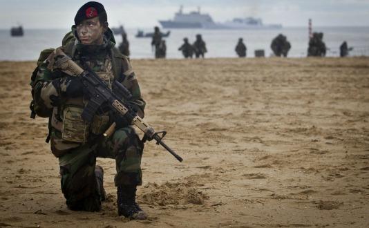marine13.jpg