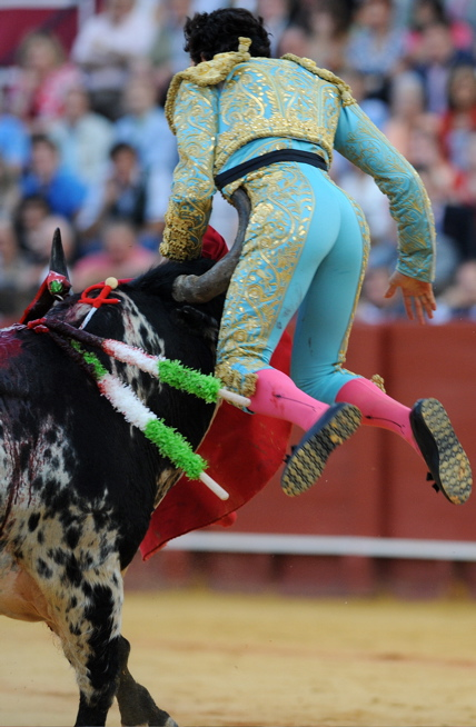 matador4.jpg
