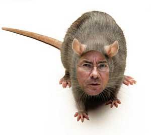 maxime_de_rat.jpg