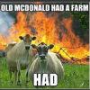 oldmcdonaldhadafarm.jpg
