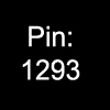 pinpinpin.jpg
