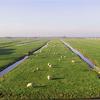 Friesland NA de exodus